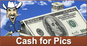 Cash for Pictures