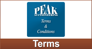 Peak Auction Terms and Conditions