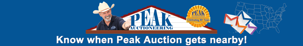 Know-when-Peak-Auction-gets-nearby---2020