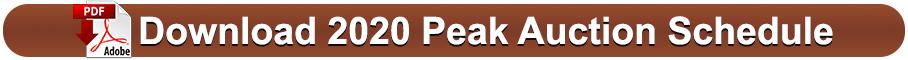 download-peak-auction-2020-auction-schedule